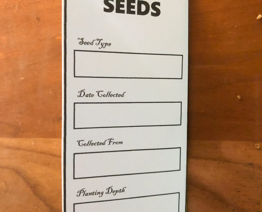 Write out details on the seeds.