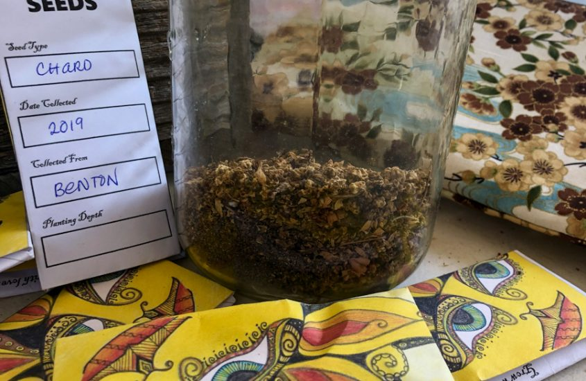 Cute Seed Packets